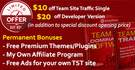 Team Site Traffic Special Offers