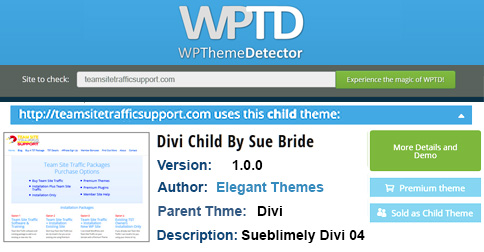 Divi Child Theme WP Detector