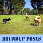 A Round-Up Post About Roundup Posts