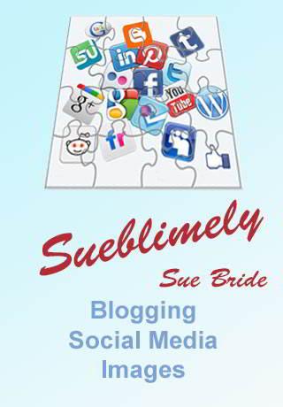 Blogging Sueblimely by Sue Bride